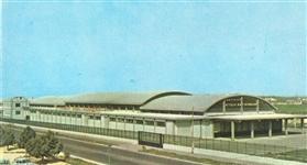 1967: Fondazione del Pastificio